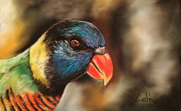 Oiseau2
